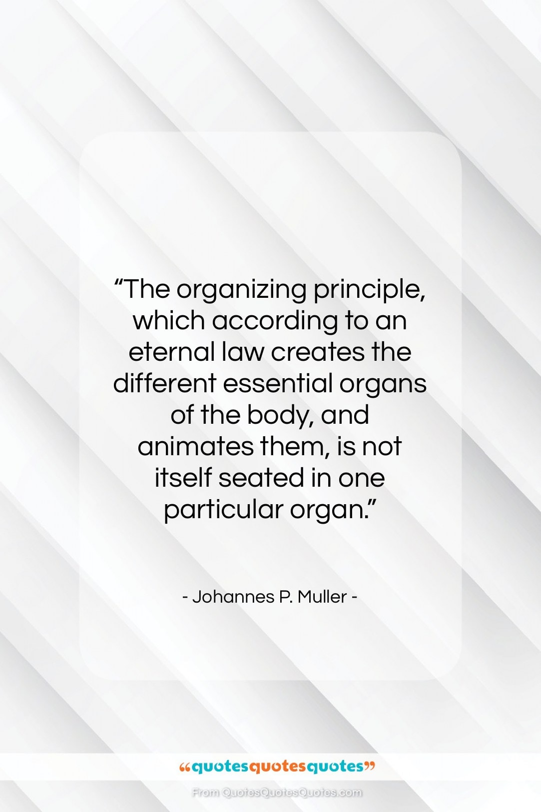 """Johannes P. Muller quote: """"The organizing principle, which according to an…""""- at QuotesQuotesQuotes.com"""