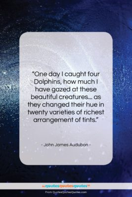 """John James Audubon quote: """"One day I caught four dolphins, how…""""- at QuotesQuotesQuotes.com"""