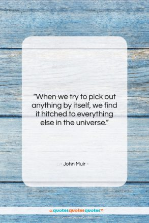"""John Muir quote: """"When we try to pick out anything…""""- at QuotesQuotesQuotes.com"""