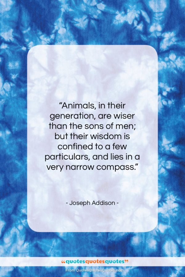 """Joseph Addison quote: """"Animals, in their generation, are wiser than…""""- at QuotesQuotesQuotes.com"""