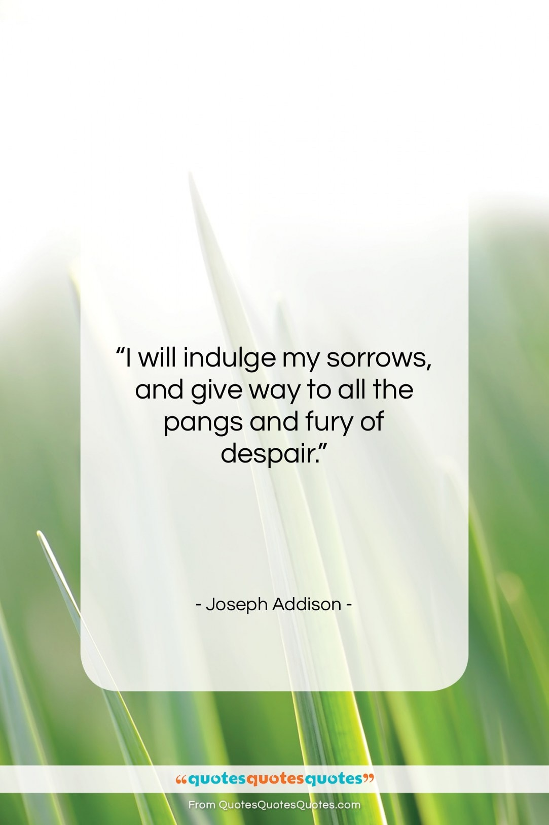 """Joseph Addison quote: """"I will indulge my sorrows, and give…""""- at QuotesQuotesQuotes.com"""