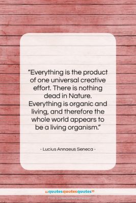 "Lucius Annaeus Seneca quote: ""Everything is the product of one universal…""- at QuotesQuotesQuotes.com"