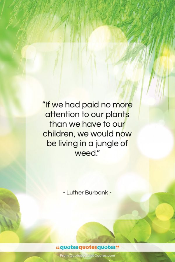"Luther Burbank quote: ""If we had paid no more attention…""- at QuotesQuotesQuotes.com"