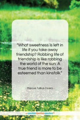 "Marcus Tullius Cicero quote: ""What sweetness is left in life if…""- at QuotesQuotesQuotes.com"