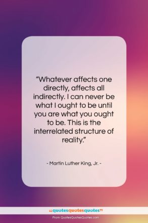 "Martin Luther King, Jr. quote: ""Whatever affects one directly, affects all indirectly….""- at QuotesQuotesQuotes.com"