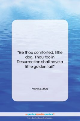 """Martin Luther quote: """"Be thou comforted, little dog, Thou too…""""- at QuotesQuotesQuotes.com"""
