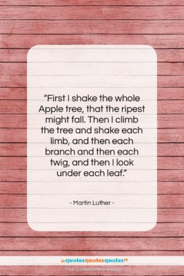 """Martin Luther quote: """"First I shake the whole Apple tree,…""""- at QuotesQuotesQuotes.com"""