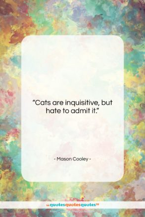 """Mason Cooley quote: """"Cats are inquisitive, but hate to admit…""""- at QuotesQuotesQuotes.com"""