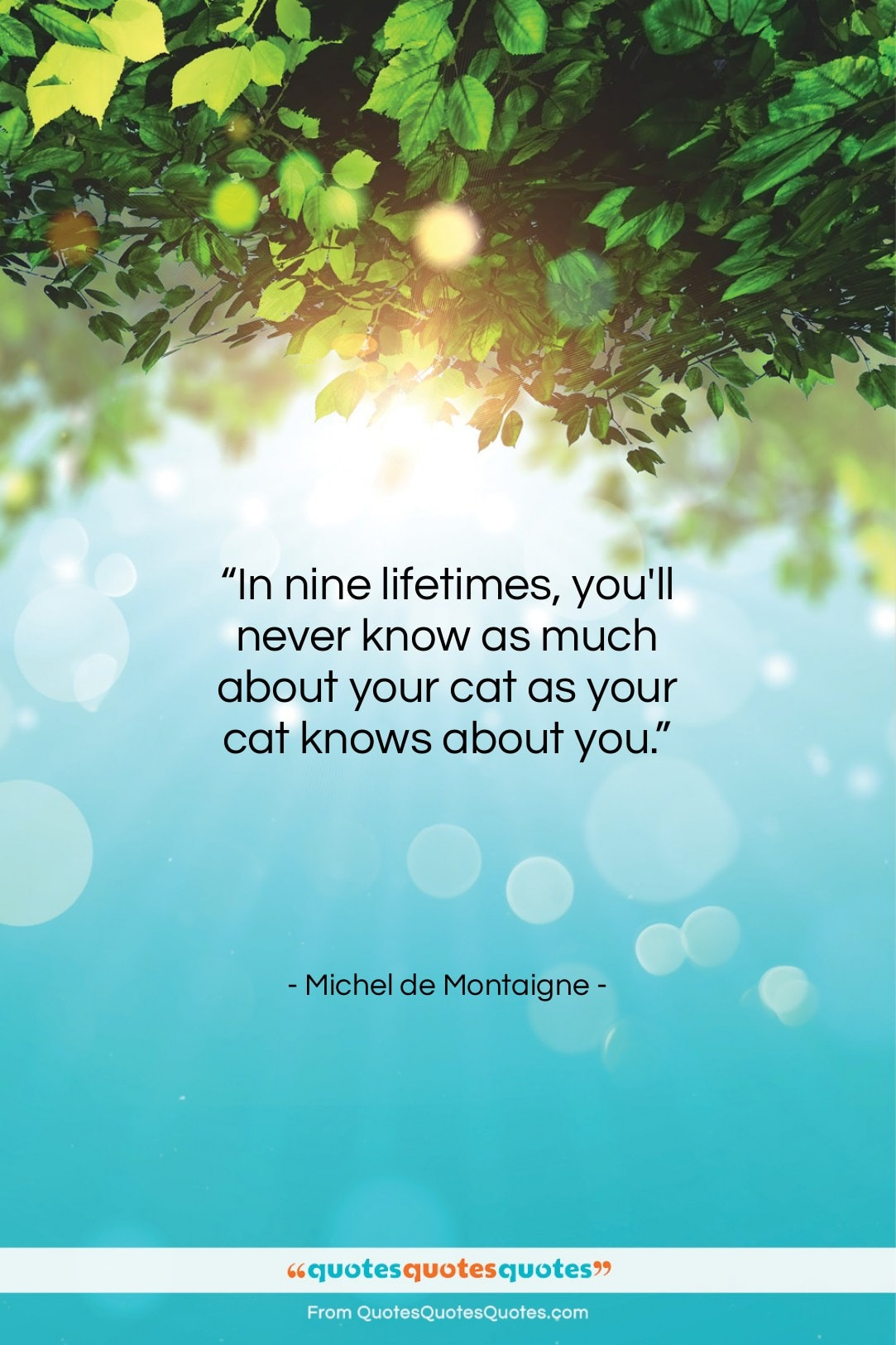 """Michel de Montaigne quote: """"In nine lifetimes, you'll never know as…""""- at QuotesQuotesQuotes.com"""