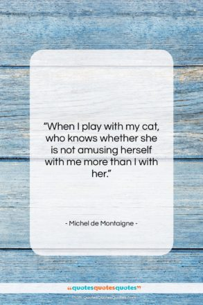 """Michel de Montaigne quote: """"When I play with my cat, who…""""- at QuotesQuotesQuotes.com"""