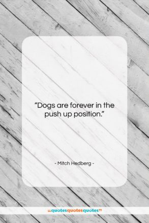 """Mitch Hedberg quote: """"Dogs are forever in the push up…""""- at QuotesQuotesQuotes.com"""