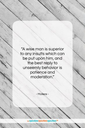 """Moliere quote: """"A wise man is superior to any…""""- at QuotesQuotesQuotes.com"""