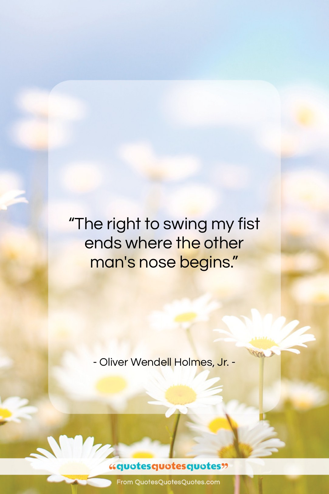 """Oliver Wendell Holmes, Jr. quote: """"The right to swing my fist ends…""""- at QuotesQuotesQuotes.com"""