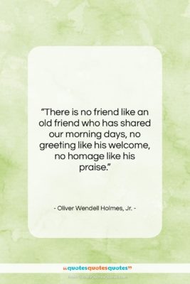 "Oliver Wendell Holmes, Jr. quote: ""There is no friend like an old…""- at QuotesQuotesQuotes.com"