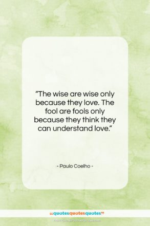 """Paulo Coelho quote: """"The wise are wise only because they…""""- at QuotesQuotesQuotes.com"""