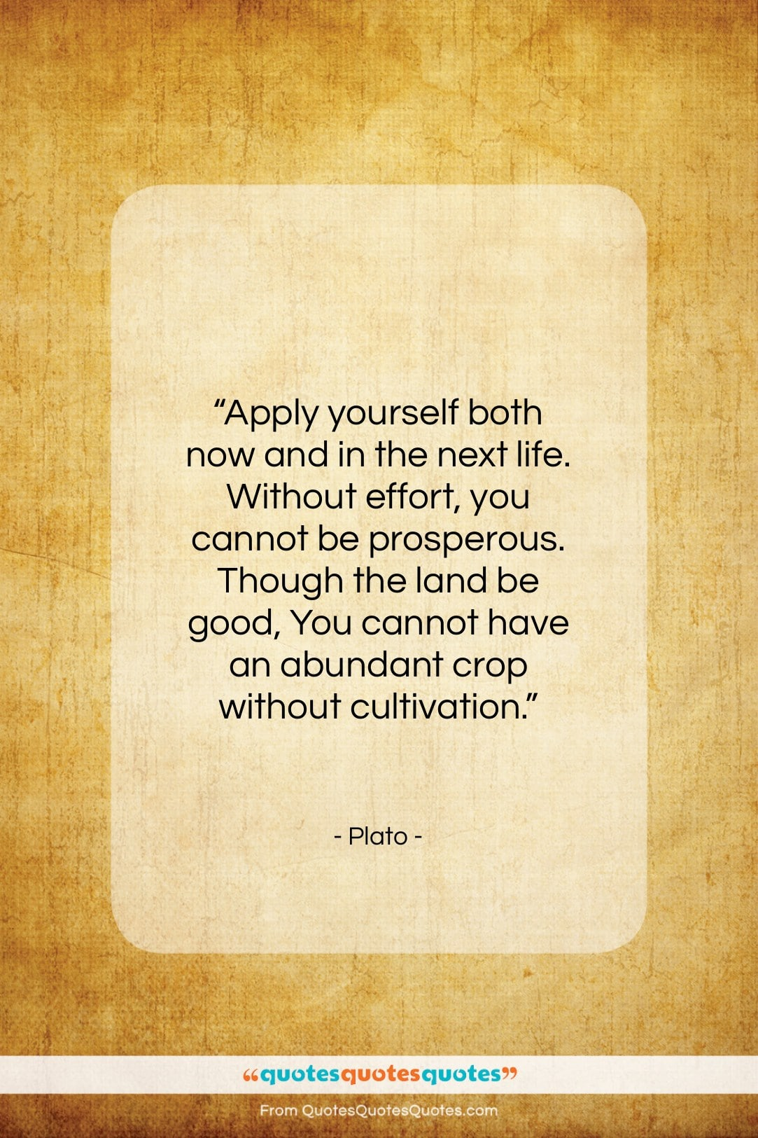 """Plato quote: """"Apply yourself both now and in the…""""- at QuotesQuotesQuotes.com"""