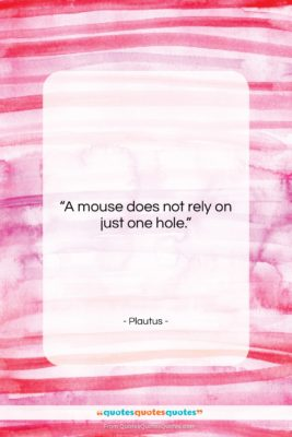 "Plautus quote: ""A mouse does not rely on just…""- at QuotesQuotesQuotes.com"