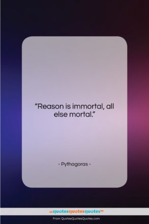 """Pythagoras quote: """"Reason is immortal, all else mortal….""""- at QuotesQuotesQuotes.com"""