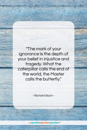 """Richard Bach quote: """"The mark of your ignorance is the…""""- at QuotesQuotesQuotes.com"""