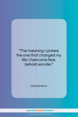"Richard Bach quote: ""The meaning I picked, the one that…""- at QuotesQuotesQuotes.com"