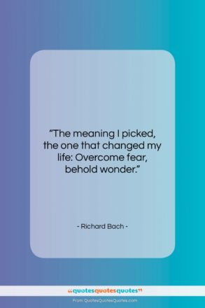"""Richard Bach quote: """"The meaning I picked, the one that…""""- at QuotesQuotesQuotes.com"""