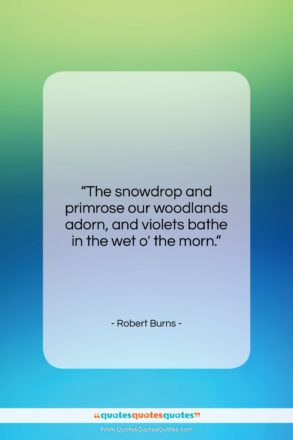 """Robert Burns quote: """"The snowdrop and primrose our woodlands adorn,…""""- at QuotesQuotesQuotes.com"""