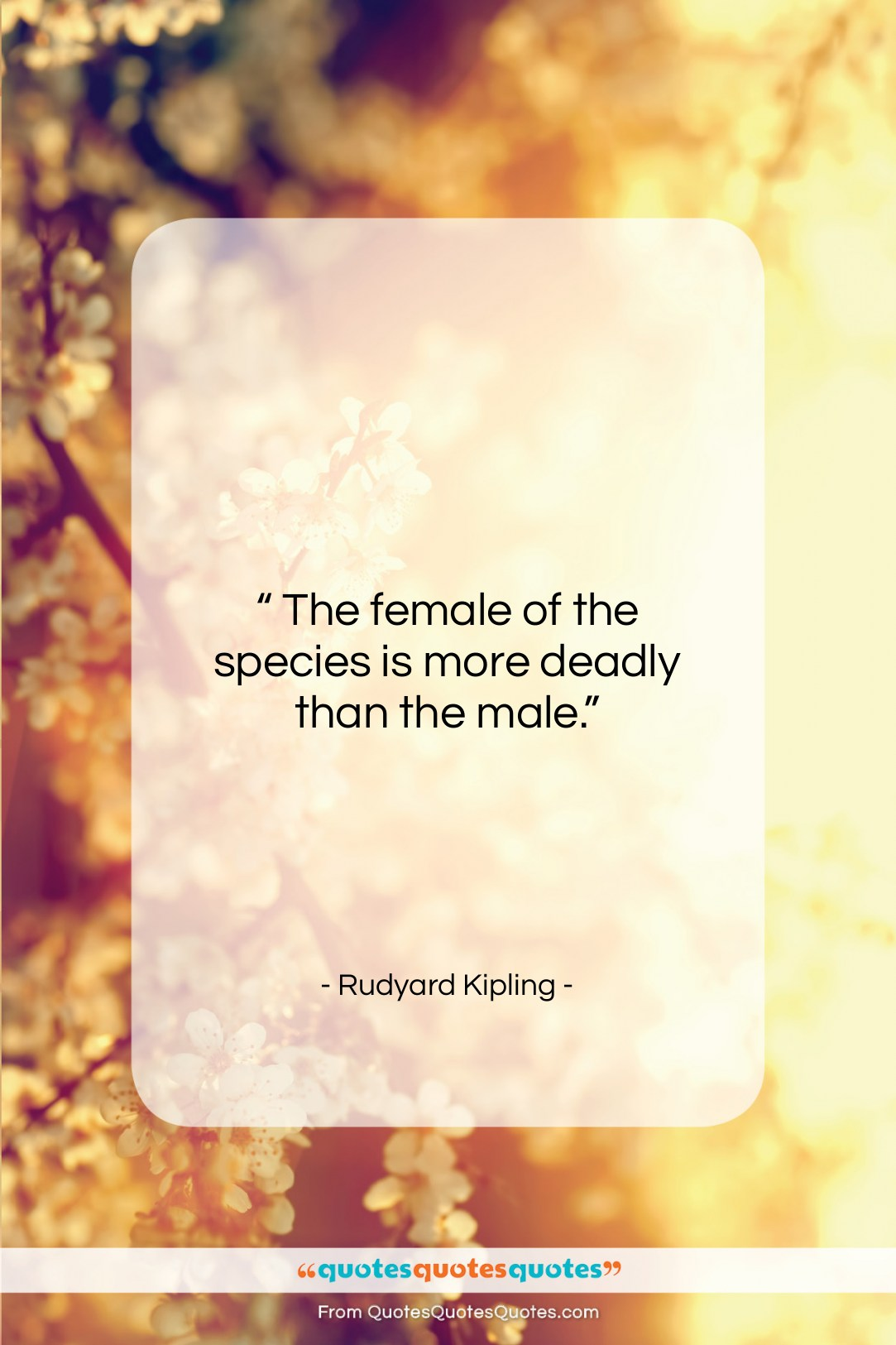"""Rudyard Kipling quote: """"The female of the species is…""""- at QuotesQuotesQuotes.com"""