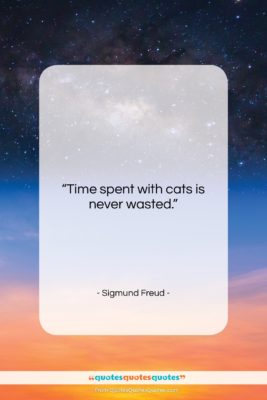 """Sigmund Freud quote: """"Time spent with cats is never wasted….""""- at QuotesQuotesQuotes.com"""