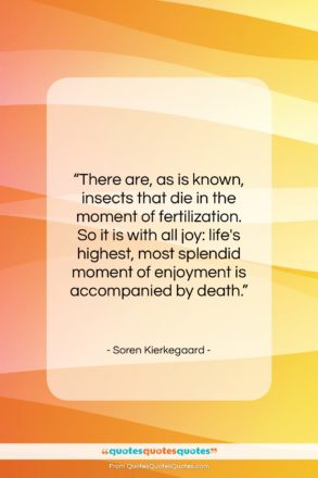 """Soren Kierkegaard quote: """"There are, as is known, insects that…""""- at QuotesQuotesQuotes.com"""