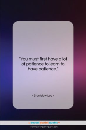 """Stanislaw Lec quote: """"You must first have a lot of…""""- at QuotesQuotesQuotes.com"""