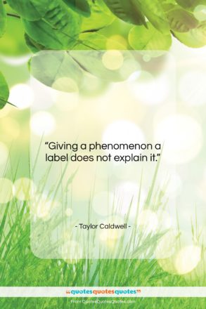 """Taylor Caldwell quote: """"Giving a phenomenon a label does not…""""- at QuotesQuotesQuotes.com"""