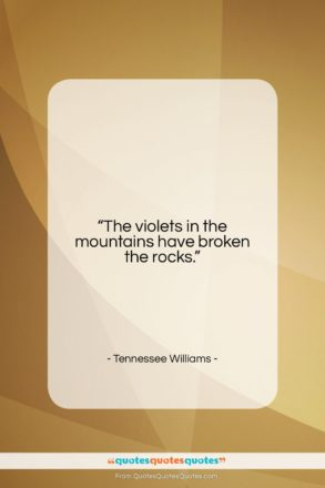 """Tennessee Williams quote: """"The violets in the mountains have broken…""""- at QuotesQuotesQuotes.com"""