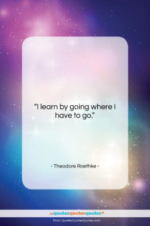 """Theodore Roethke quote: """"I learn by going where I have…""""- at QuotesQuotesQuotes.com"""