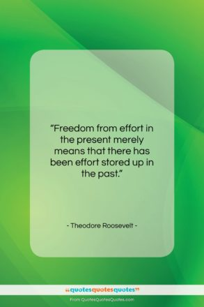 """Theodore Roosevelt quote: """"Freedom from effort in the present merely…""""- at QuotesQuotesQuotes.com"""
