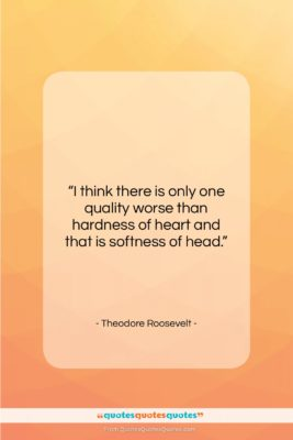 "Theodore Roosevelt quote: ""I think there is only one quality…""- at QuotesQuotesQuotes.com"