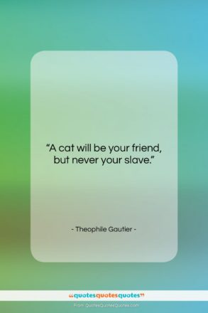 """Theophile Gautier quote: """"A cat will be your friend, but…""""- at QuotesQuotesQuotes.com"""
