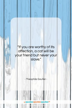 """Theophile Gautier quote: """"If you are worthy of its affection,…""""- at QuotesQuotesQuotes.com"""