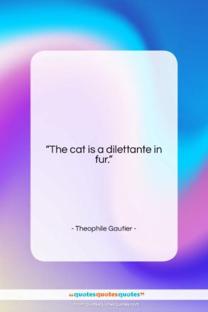 """Theophile Gautier quote: """"The cat is a dilettante in fur….""""- at QuotesQuotesQuotes.com"""