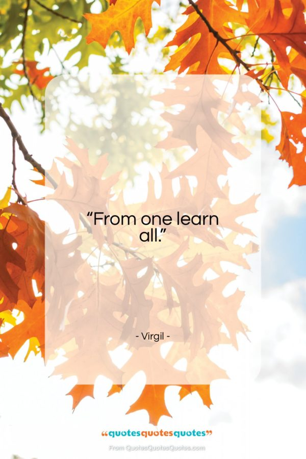 """Virgil quote: """"From one learn all.""""- at QuotesQuotesQuotes.com"""