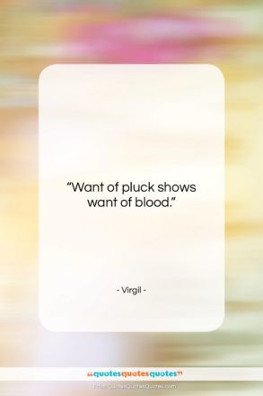 """Virgil quote: """"Want of pluck shows want of blood….""""- at QuotesQuotesQuotes.com"""