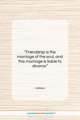 """Voltaire quote: """"Friendship is the marriage of the soul,…""""- at QuotesQuotesQuotes.com"""