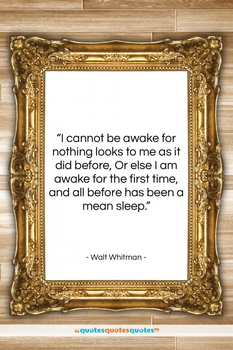 """Walt Whitman quote: """"I cannot be awake for nothing looks…""""- at QuotesQuotesQuotes.com"""