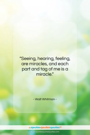 """Walt Whitman quote: """"Seeing, hearing, feeling, are miracles, and each…""""- at QuotesQuotesQuotes.com"""