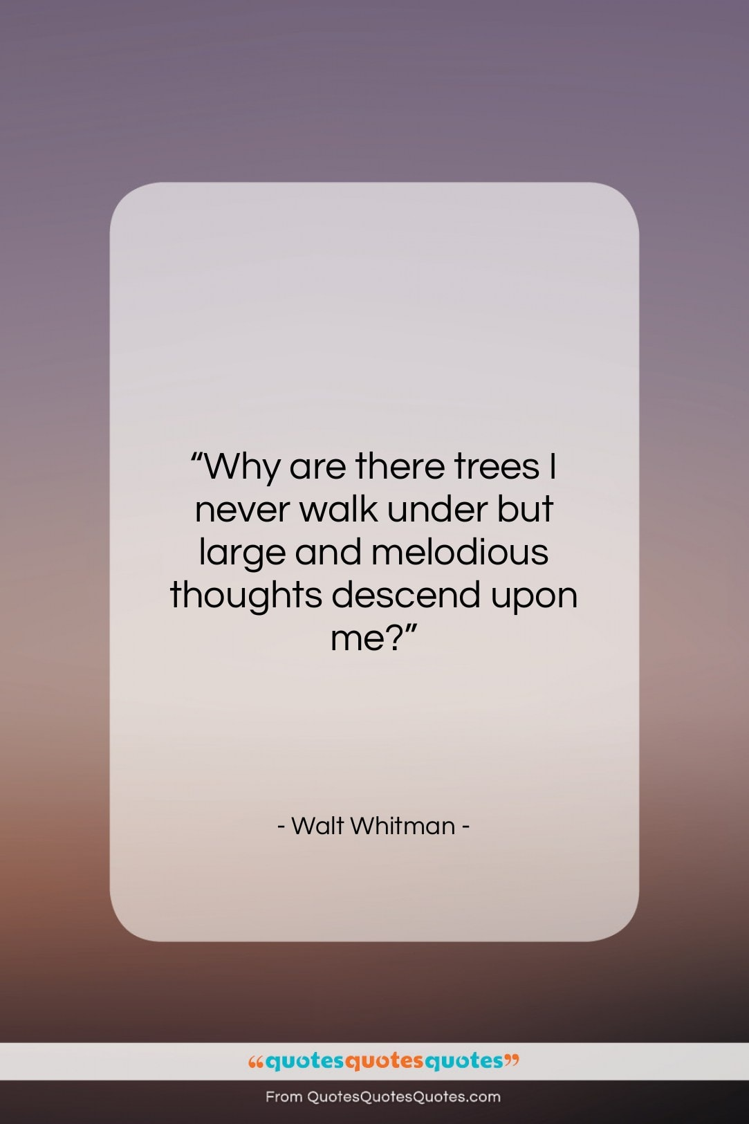 """Walt Whitman quote: """"Why are there trees I never walk…""""- at QuotesQuotesQuotes.com"""