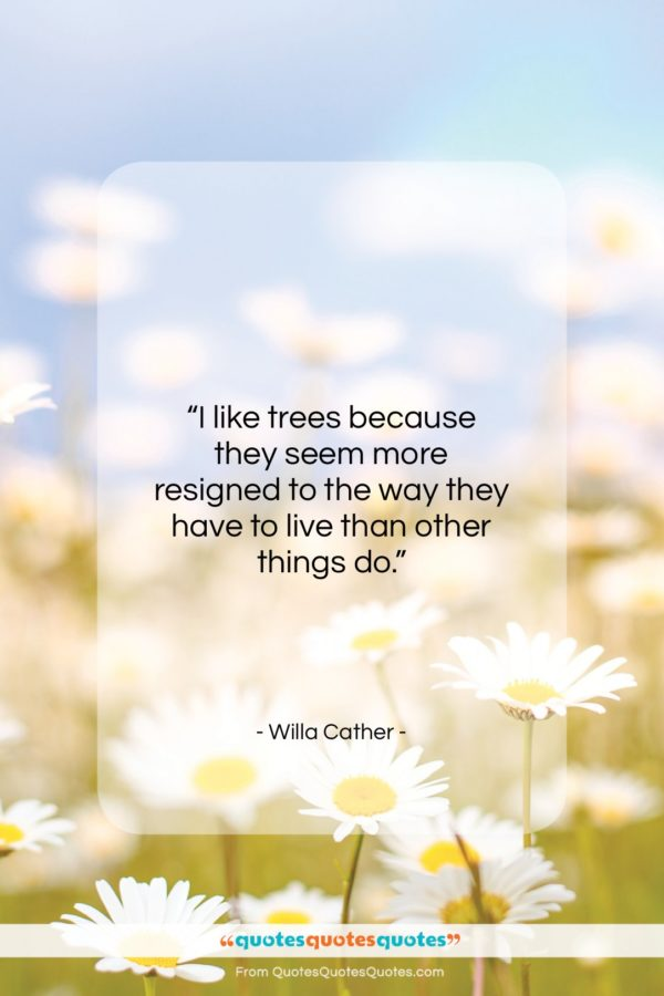 "Willa Cather quote: ""I like trees because they seem more…""- at QuotesQuotesQuotes.com"