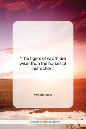 """William Blake quote: """"The tigers of wrath are wiser than…""""- at QuotesQuotesQuotes.com"""