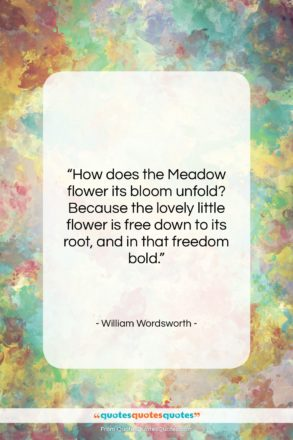 """William Wordsworth quote: """"How does the Meadow flower its bloom…""""- at QuotesQuotesQuotes.com"""