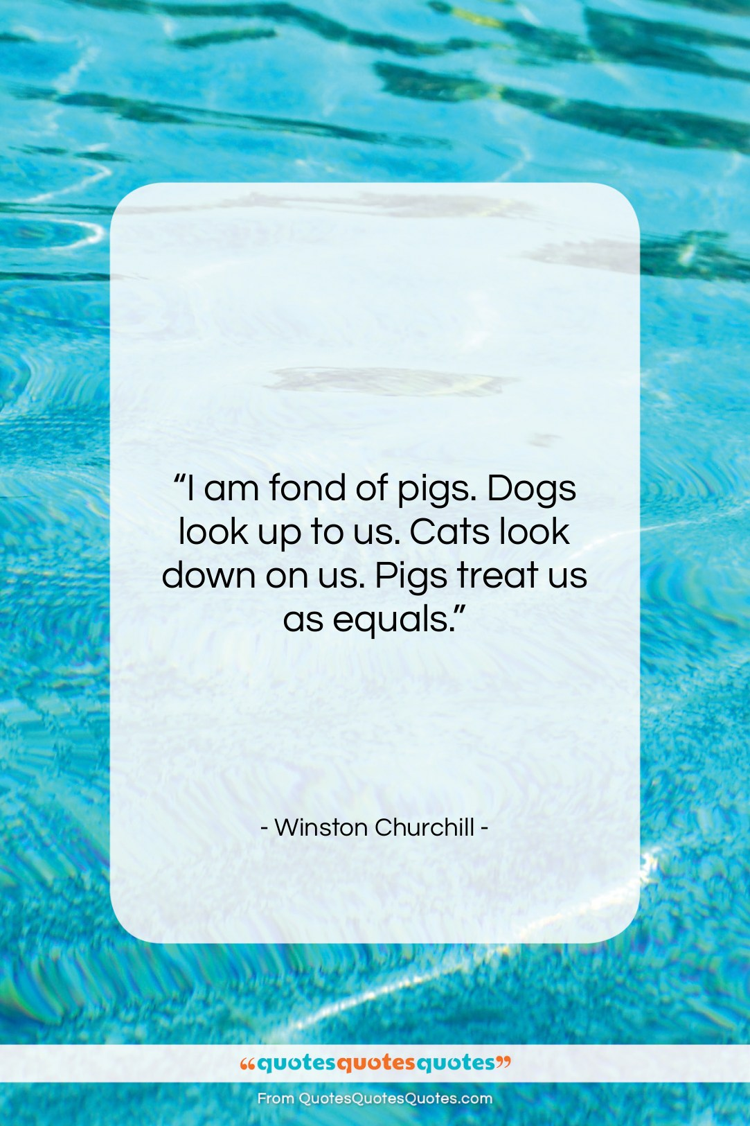 """Winston Churchill quote: """"I am fond of pigs. Dogs look…""""- at QuotesQuotesQuotes.com"""