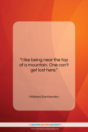 """Wislawa Szymborska quote: """"I like being near the top of…""""- at QuotesQuotesQuotes.com"""